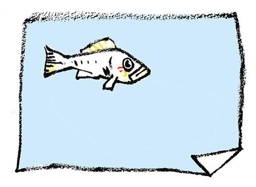 Fisch und Wertpapiere